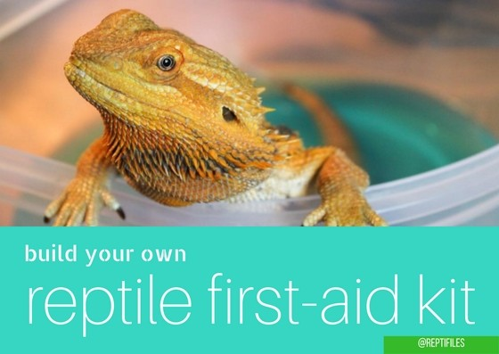reptile first aid kit blog graphic