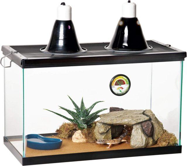 Zilla Desert Reptile Kit 10