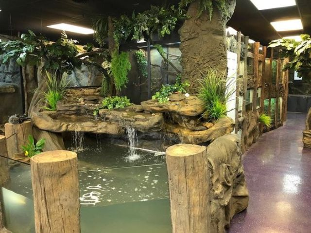 Brian Barczyk's reptile zoo, The Reptarium - an example of high-quality hobbyist-style reptile housing
