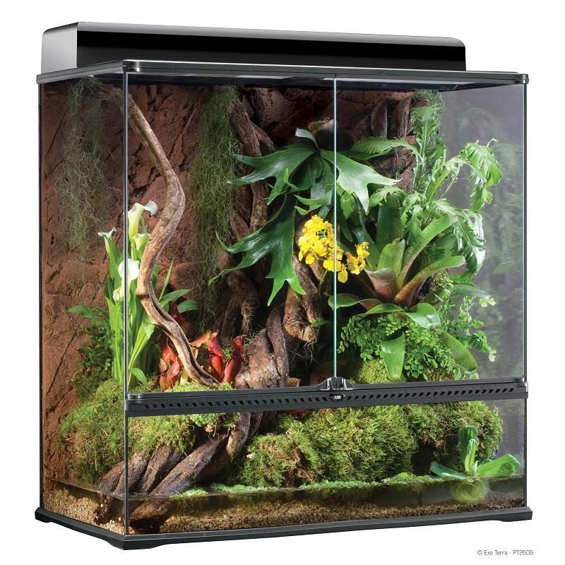 https www reptiles farm ch terrariums 1 le terrarium exo terra html