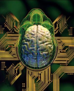 Il cervello elettronico ora imita quello umano