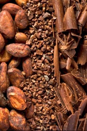 Aroma di cioccolato, mix di 600 odori inclusi cavolo, cetrioli e sudore umano