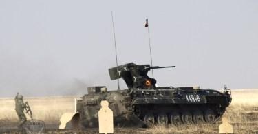 Batalionul 300 Infanterie Mecanizata