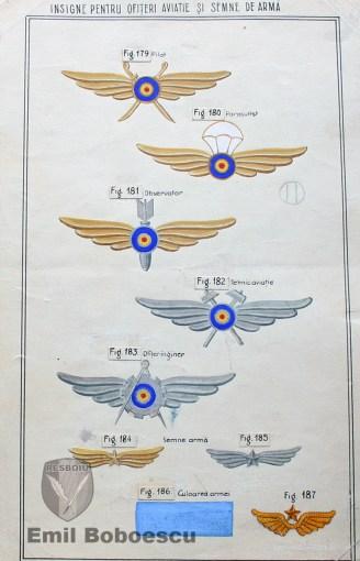 Insigne pentru Ofiteri Aviatie si Semne de Arma