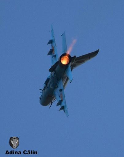 MiG 21 (15)