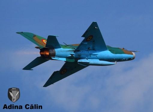 MiG 21 (6)