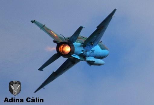 MiG 21 (7)