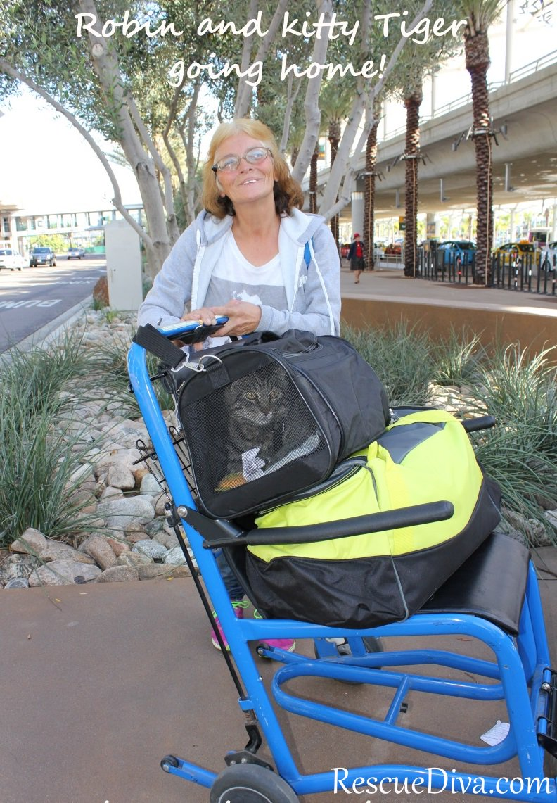 Lost, disabled rescuer and her beloved kitty finally make it home