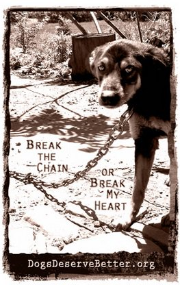 """Their abuse is much more subtle, no less insidious. They may not be in immediate danger of death. But death of the soul is still death to me. And they are dying out there, piece by piece, hour by hour."" ~ Tamira Thayne on chained dogs"