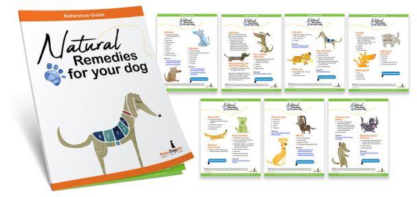 Guía de referencia de remedios naturales de Rescue Dogs 101