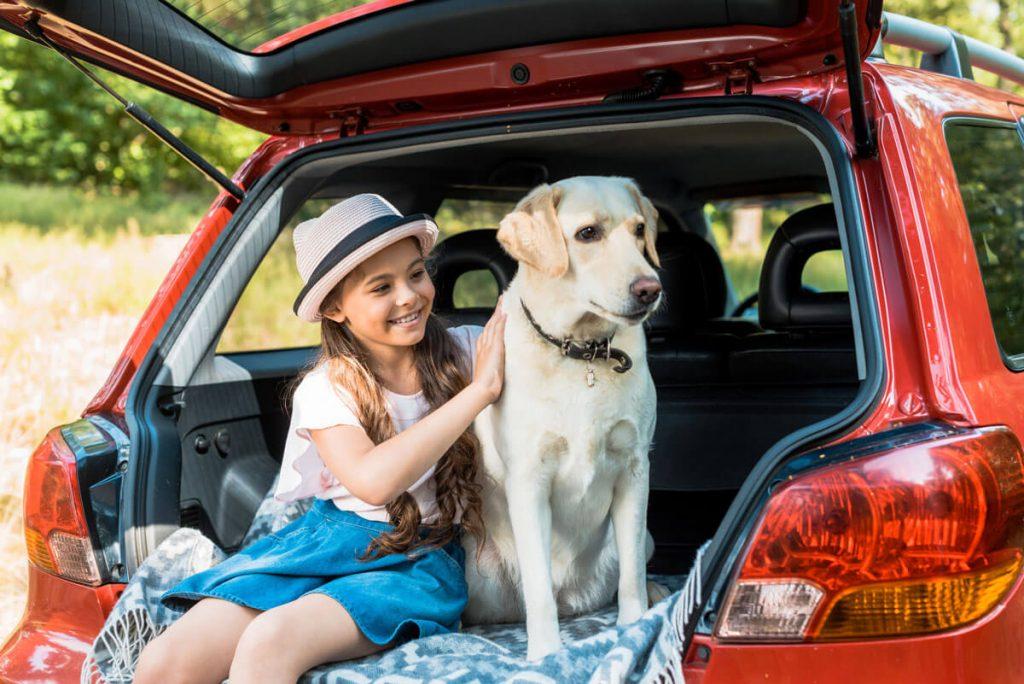 perro y niña sentados en la parte trasera del coche