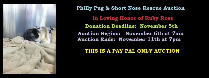2015.11.6-11 auction