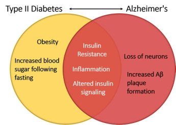 「alzheimer diabetes」の画像検索結果
