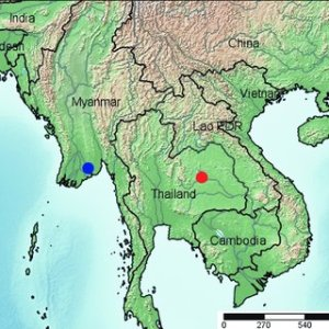 Map of Southeast Asia with localities  blue circle Rangun  type     Map of Southeast Asia with localities  blue circle Rangun  type locality of  Bamaroodes
