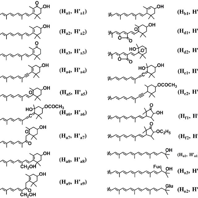 Synthetic pathway of astaxanthin, lutein, and fucoxanthin ...