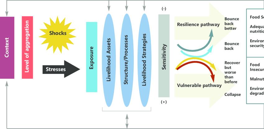 Dfid Tango Resilience Conceptual Framework Context E G