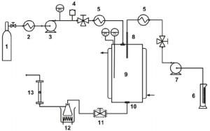 Schematic diagram of SAS apparatus 1 CO 2 source, 2