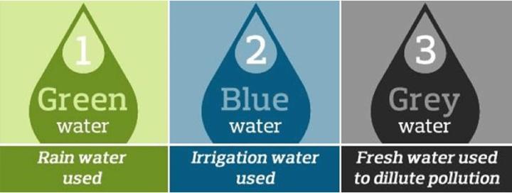 Green, blue and grey water footprints.   Download Scientific Diagram
