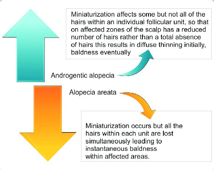 Schematic representation of miniaturization in AGA and