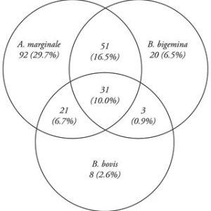 Venn diagram PCR results for BPS plex | Download