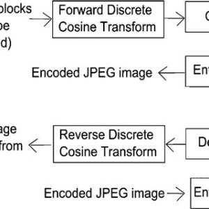 (a) The original input image; (b) the JPEG depressed image at a low | Download Scientific