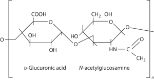 4 The chemical structure of hyaluronic acid   Download