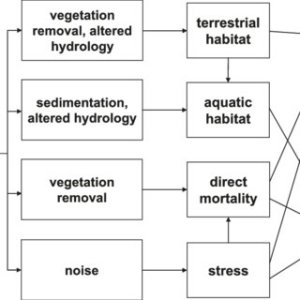 (PDF) A conceptual framework for understanding, assessing, and mitigating ecological effects of