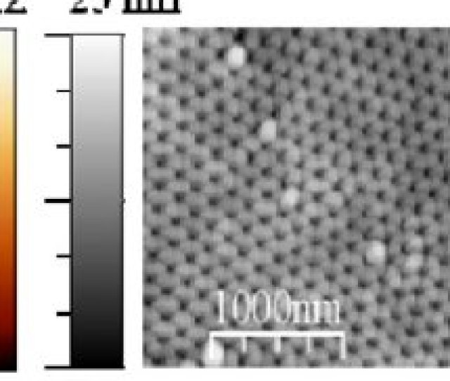 Afm Left And Mfm Right Images Of Antidot Arrays With Template Pore