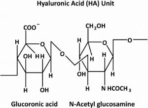 Structure of Hyaluronic acid molecule (HA)   Download
