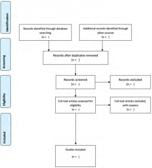 PRISMA Flow Diagram for the scoping review process 15