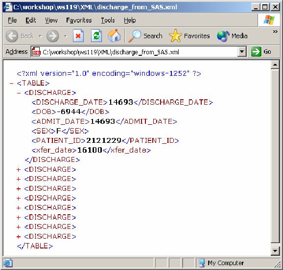 XML file created by writing to the XML libname engine.  Download