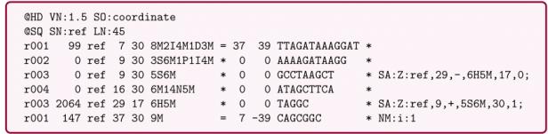 A sample of the SAM file. | Download Scientific Diagram