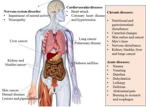 Chronic arsenic poisoning to human. | Download Scientific Diagram