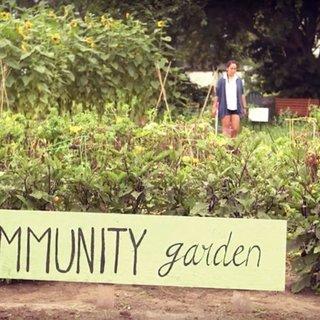 Pdf Gardening For Health Using Garden Coordinators And Volunteers To Implement Rural School And Community Gardens