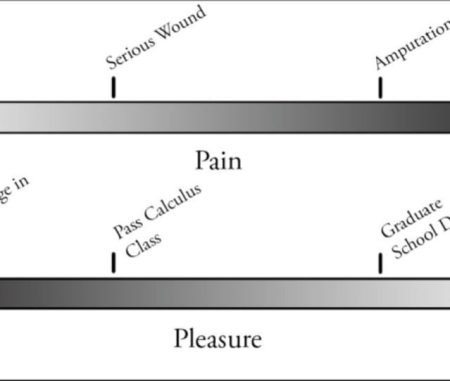 Example Scale Of Pain And Pleasure