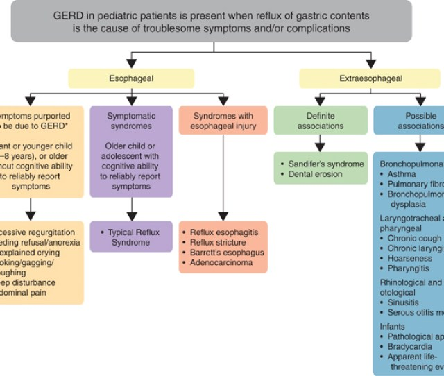 Global Definition Of Gerd In The Pediatric Population Where Other Causes Have Been Ruled