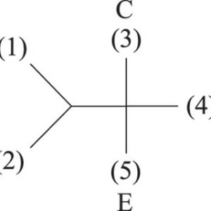 The topology of the fivepoint Feynman diagrams with two