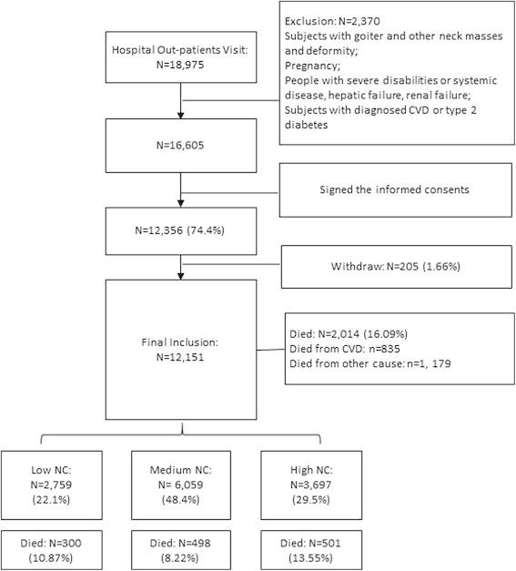 Cross Sectional Study Flow Chart