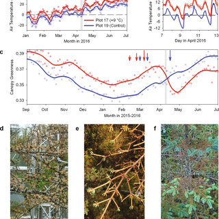 10000 Publications And Pdfs In Plant Physiological Phenomena