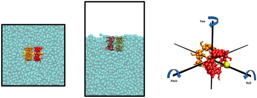 Representation of simulation boxes with an α-CD 2 SDS 1 ...