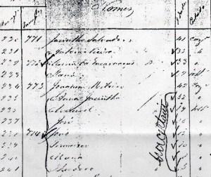 sshansa-1882-ship-manifest-ana-jacintha-de-mello-pacheco122
