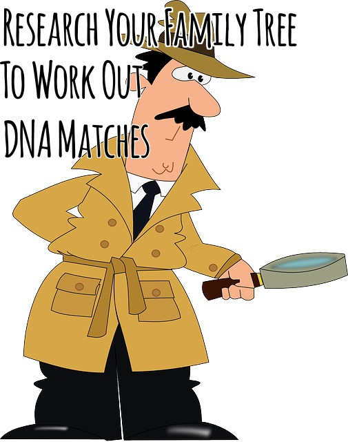 Research Your Family Tree Forward to Work Out DNA Matches