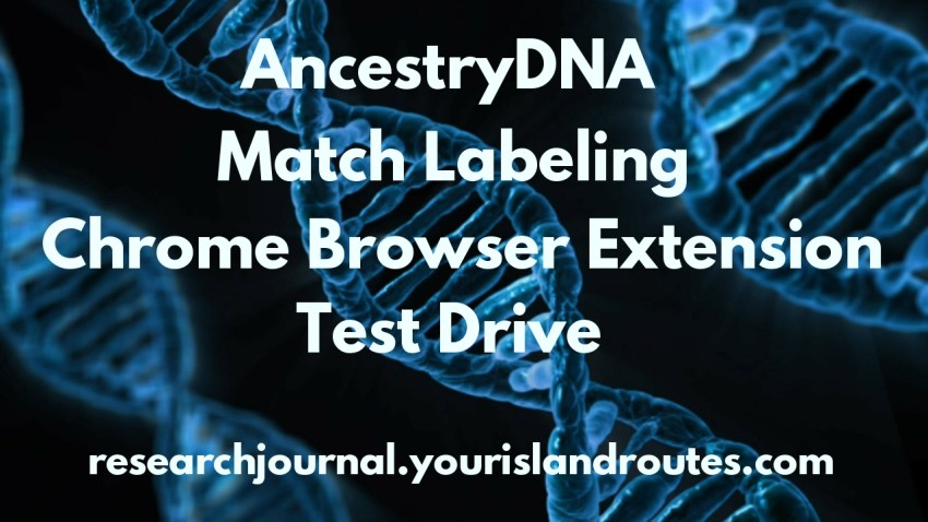 DNA AncestryDNA chrome browser
