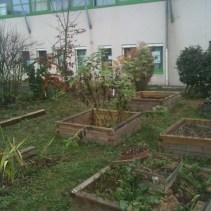 2011-clg-club-jardin-reprise09