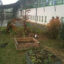 2011-clg-club-jardin-reprise11