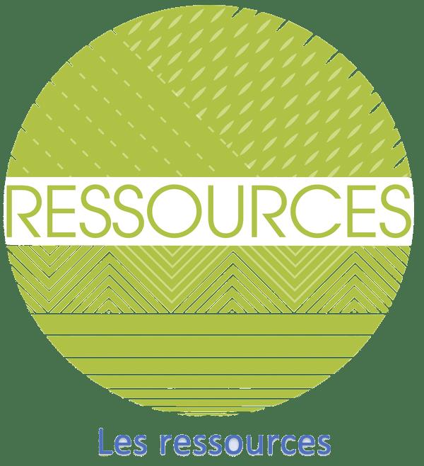 Read more about the article Les ressources proposées