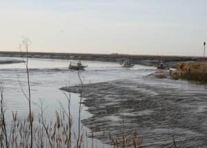 Bateau de pêche à la civelle dans le Sèvre niortaire (RNN Baie Aiguillon)