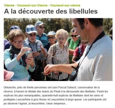 Sortie nature libellules 2013, Nouvelle République