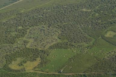 Vue aérienne de la Réserve du Pinail © J-G. Couteau