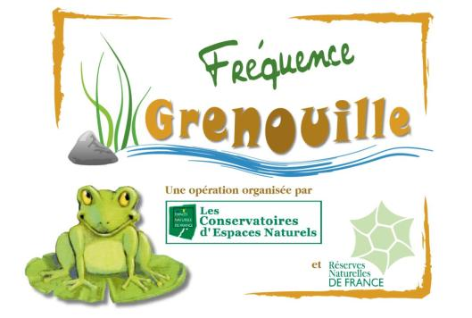 loge-2015-fréquence-grenouille-